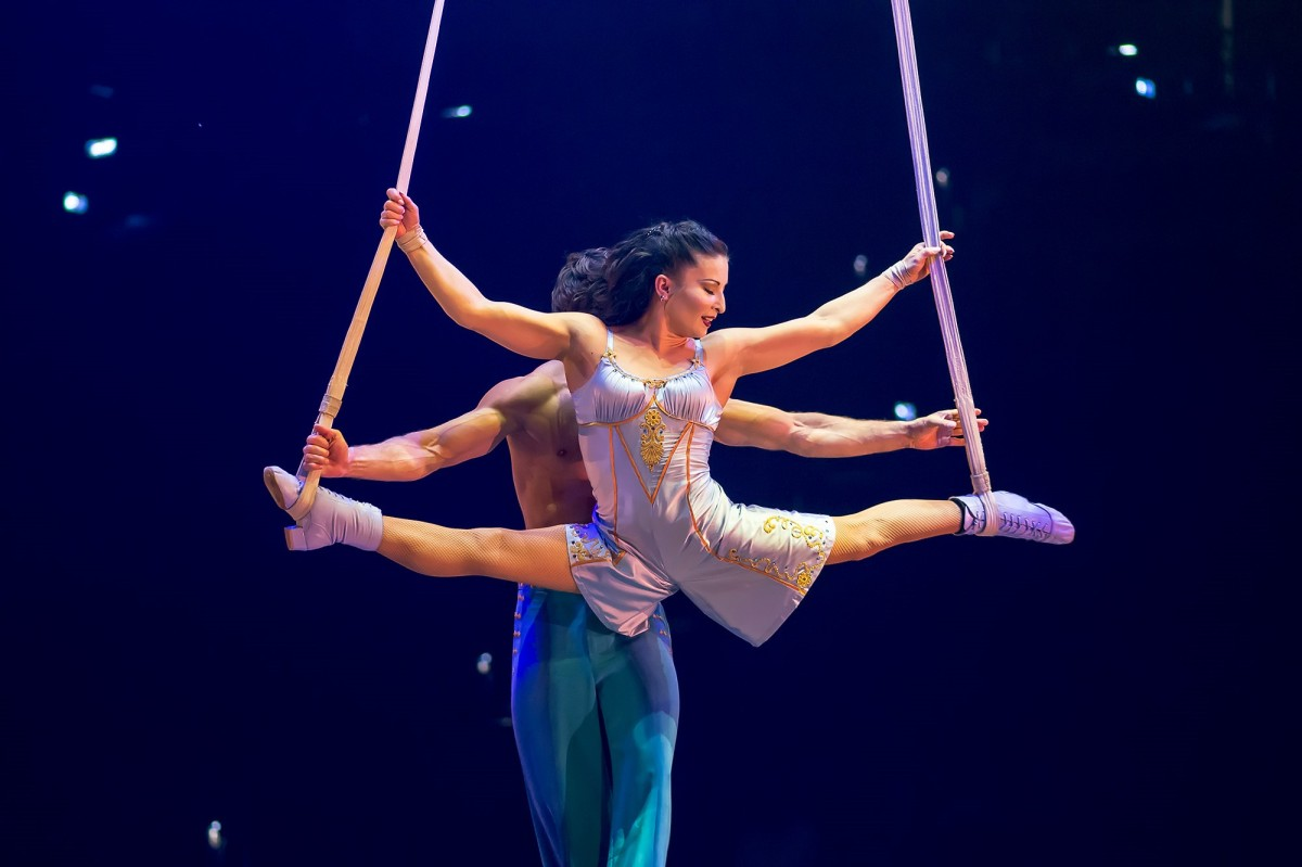 Cirque de Solieil's 'Corteo' Brings a New Kind of Circus to Town!